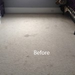 Cranberry Juice Stain Removal Foster City-A