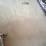 Foster City-Carpet-Cleaning-Company