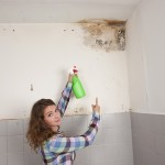 Foster City-Mold-Remediation
