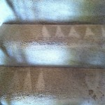 Foster City-Stairs-Carpet-Cleaning