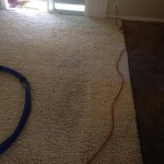 Foster City-Traffic-Area-carpet-cleaners