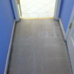 Foster City-Vomit-2-after-carpet
