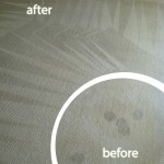 Foster City-Wine-Stain-Carpet-Cleaning
