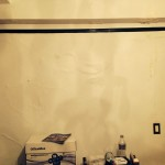 Foster City-mold-damage